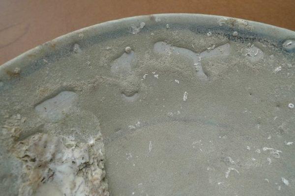 sunkenwreck( )mingdish/bowl/plateglazedunderwaterporcelain#