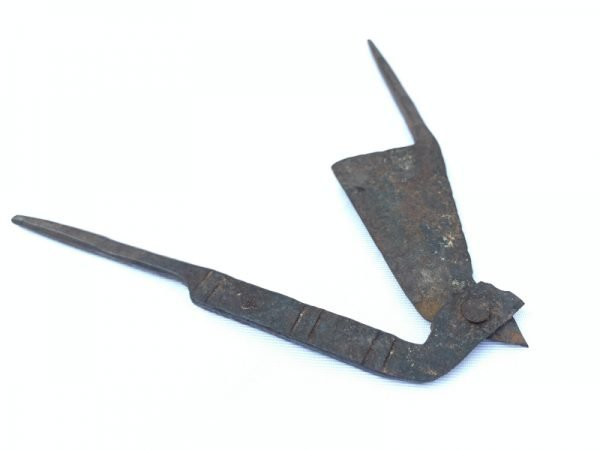 VINTAGE ANTIQUE 160mm IRON CUTTER Betel Nut Borneo India Original Authentic #1