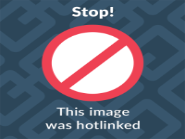 GENITAL PIERCING (1 pair) Barbell Penis Adornment Tribal Sex Ampallang Palang Apadravya